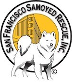 San Francisco Samoyed Rescue